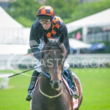 Race 7, Bondeiger, James Winks_01-11-14, Grp 1 AAMI Victoria Derby, Flemington_Michael McInally_2994