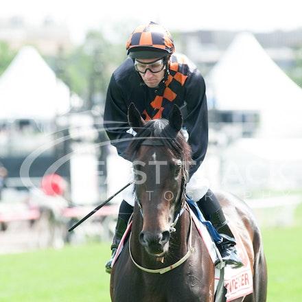 Race 7, Bondeiger, James Winks_01-11-14, Grp 1 AAMI Victoria Derby, Flemington_Michael McInally_2995