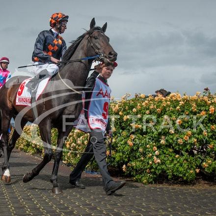 Race 7, Bondeiger, James Winks_01-11-14, Grp 1 AAMI Victoria Derby, Flemington_Sharon Chapman_2755