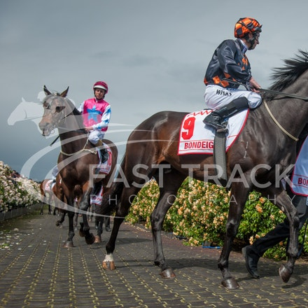 Race 7, Bondeiger, James Winks_01-11-14, Grp 1 AAMI Victoria Derby, Flemington_Sharon Chapman_2756