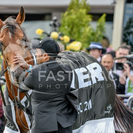 Race 8, Bonaria_01-11-14, Grp 1 Myer Classic, Flemington_Adam Mooshian, WIN_214