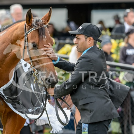Race 8, Bonaria_01-11-14, Grp 1 Myer Classic, Flemington_Adam Mooshian, WIN_215