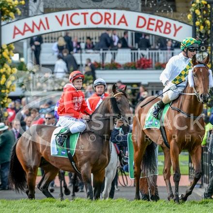 Race 9, A Time For Julia, Glen Boss_01-11-14, Grp 2 TAB Stakes, Flemington_Adam Mooshian_365