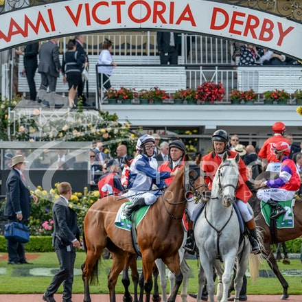 Race 9, Adamantium, James Winks_01-11-14, Grp 2 TAB Stakes, Flemington_Adam Mooshian_314