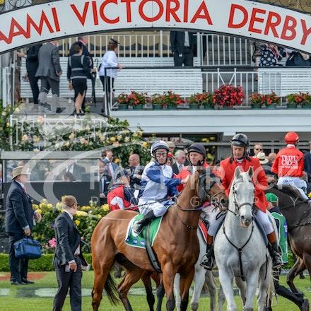 Race 9, Adamantium, James Winks_01-11-14, Grp 2 TAB Stakes, Flemington_Adam Mooshian_313