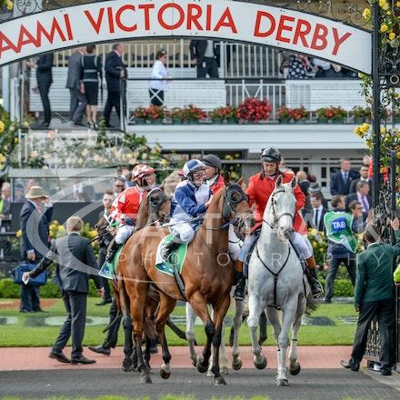 Race 9, Adamantium, James Winks_01-11-14, Grp 2 TAB Stakes, Flemington_Adam Mooshian_317