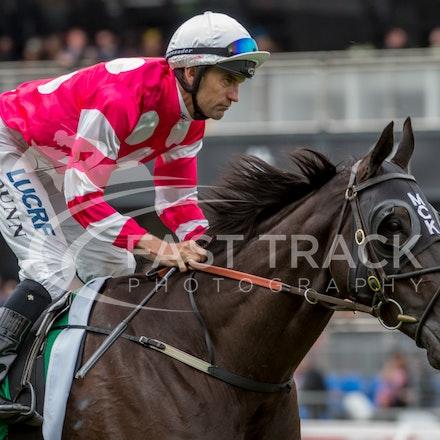 Race 2, Danish Whiskey, Dwayne Dunn_04-11-14, Flemington_Sharon Chapman_960