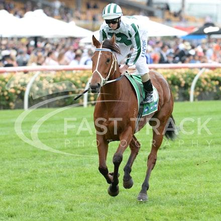 Race 2, Dig A Pony, Luke Nolen_04-11-14, Flemington_Adam Mooshian_530