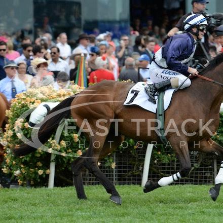 Race 3, Aggregator, Luke Nolen_04-11-14, Flemington_Adam Mooshian_543