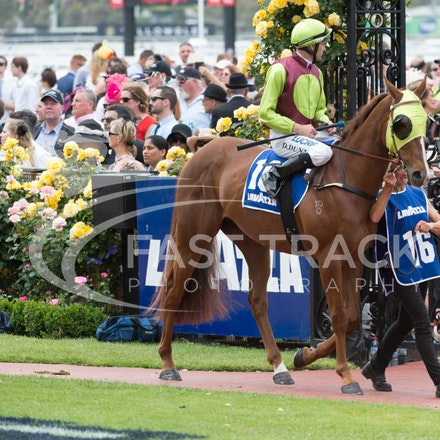 Race 4, Bon Rocket, Dwayne Dunn_04-11-14, Flemington_Sharon Chapman_078