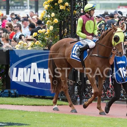 Race 4, Bon Rocket, Dwayne Dunn_04-11-14, Flemington_Sharon Chapman_079