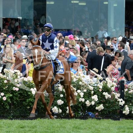 Race 4, Chestnut Charlie, Dom Tourneur_04-11-14, Flemington_Adam Mooshian_586