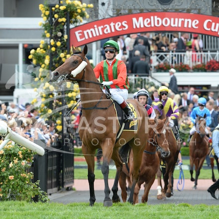Race 5, Bel Vuitton, Vlad Duric_04-11-14, Flemington_Adam Mooshian_141