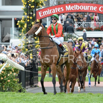 Race 5, Bel Vuitton, Vlad Duric_04-11-14, Flemington_Adam Mooshian_142
