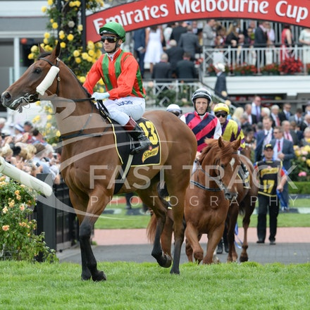 Race 5, Bel Vuitton, Vlad Duric_04-11-14, Flemington_Adam Mooshian_143