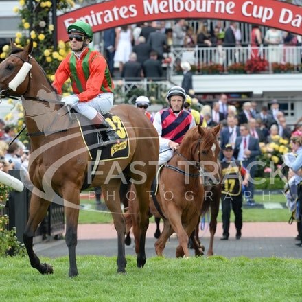 Race 5, Bel Vuitton, Vlad Duric_04-11-14, Flemington_Adam Mooshian_144