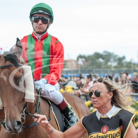 Race 5, Bel Vuitton, Vlad Duric_04-11-14, Flemington_Michael McInally_317