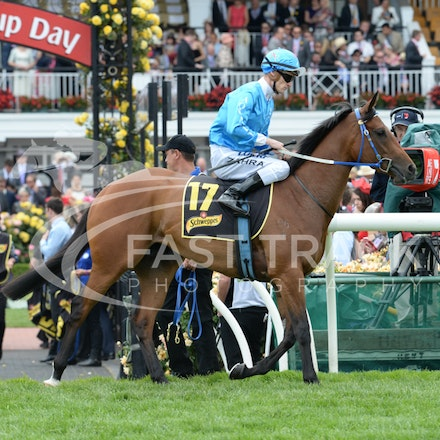Race 5, Empress O'Reilly, Mark Zahra_04-11-14, Flemington_Adam Mooshian_155