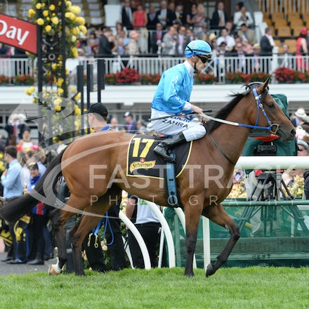 Race 5, Empress O'Reilly, Mark Zahra_04-11-14, Flemington_Adam Mooshian_156