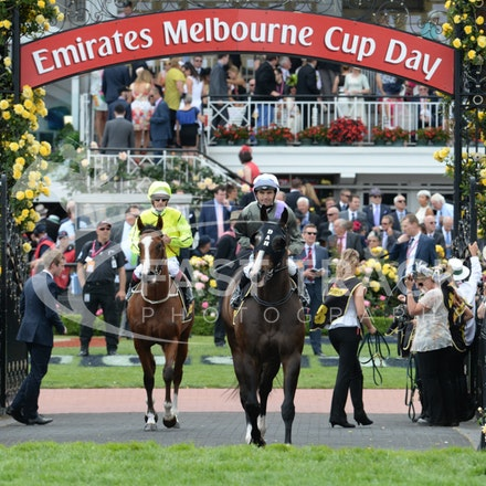 Race 5, Forgive And Forget, Dwayne Dunn_04-11-14, Flemington_Adam Mooshian_126