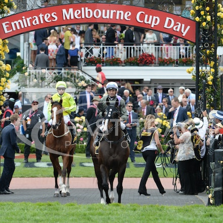 Race 5, Forgive And Forget, Dwayne Dunn_04-11-14, Flemington_Adam Mooshian_127