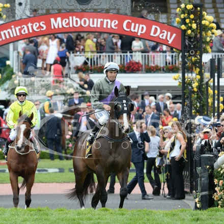 Race 5, Forgive And Forget, Dwayne Dunn_04-11-14, Flemington_Adam Mooshian_128