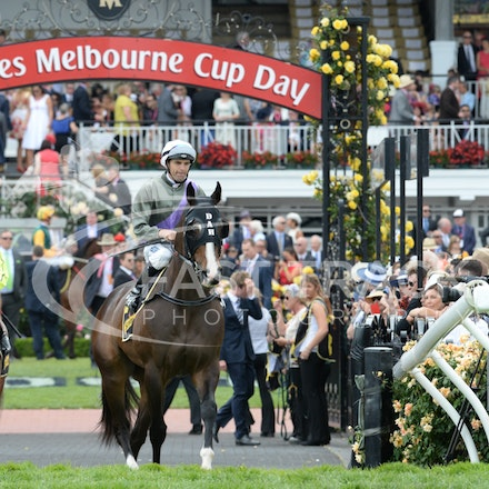 Race 5, Forgive And Forget, Dwayne Dunn_04-11-14, Flemington_Adam Mooshian_129