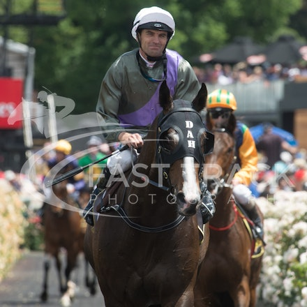 Race 5, Forgive And Forget, Dwayne Dunn_04-11-14, Flemington_Adam Mooshian_166