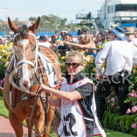 Race 9, Couldn't Agreemore_04-11-14, Flemington_Michael McInally_409