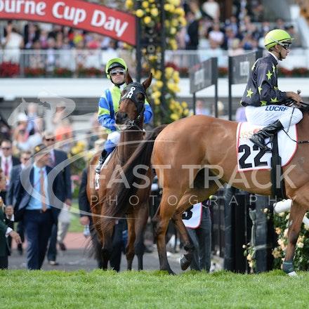 Race 9, Couldn't Agreemore, Dom Tourneur_04-11-14, Flemington_Adam Mooshian_295