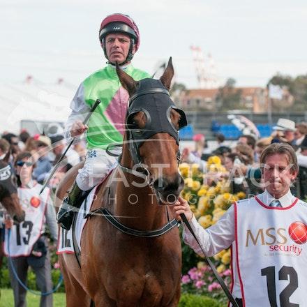Race 9, Facile Tigre, Darren Gauci_04-11-14, Flemington_Michael McInally_412