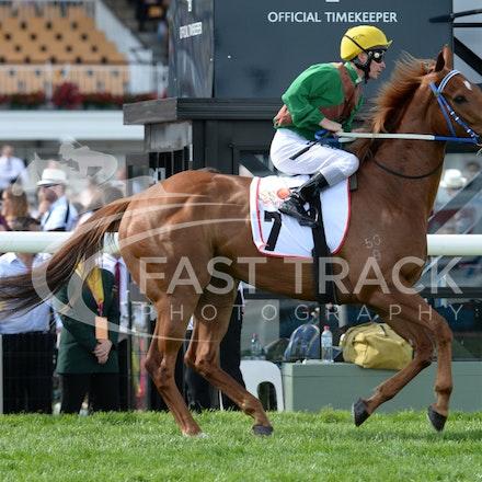 Race 9, Final Crescendo, Ben Melham_04-11-14, Flemington_Adam Mooshian_292