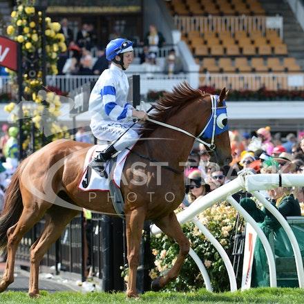 Race 9, Karacatis, Damian Lane_04-11-14, Flemington_Adam Mooshian_281
