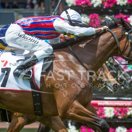 Flemington Oaks Day - Race 1