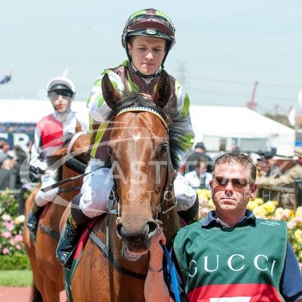 Race 3, Aerobar, James McDonald_06-11-14, Flemington, Michael McInally_981