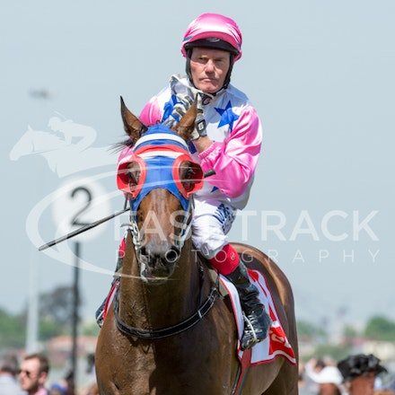 Race 5, Chill Party, Brian Werner_06-11-14, Flemington_Sharon Chapman_419