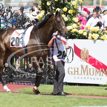 Flemington Oaks Day - Race 6
