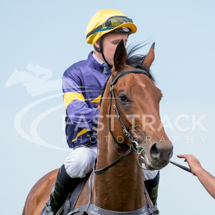 Race 5, Big Memory, Tommy Berry_08-11-14, Flemington_Sharon Chapman_335