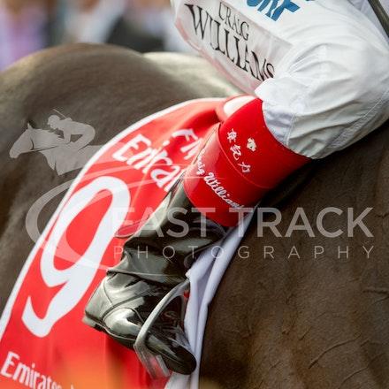 Race 7, Craig Williams_08-11-14, Flemington_Sharon Chapman_768