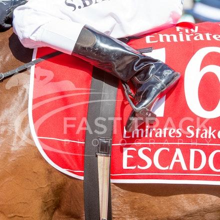 Race 7, Escado, Stephen Baster_08-11-14, Flemington_Sharon Chapman_765
