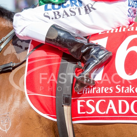 Race 7, Escado, Stephen Baster_08-11-14, Flemington_Sharon Chapman_766