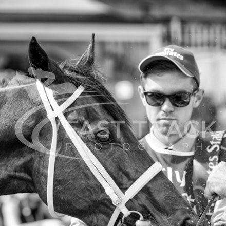 Race 7, Hucklebuck_08-11-14, Flemington_Sharon Chapman, WIN_647