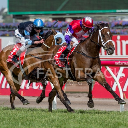 Flemington Emirates Stakes Day - Race 7 Emirates Stakes