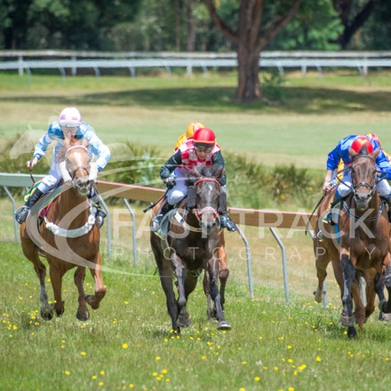 Race 1, Without Exception, Debbie Waymouth_26-12-14, Drouin, WIN_008