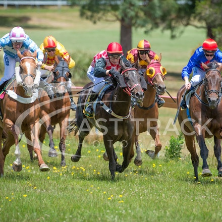 Race 1, Without Exception, Debbie Waymouth_26-12-14, Drouin, WIN_012