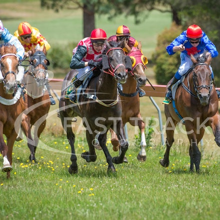 Race 1, Without Exception, Debbie Waymouth_26-12-14, Drouin, WIN_013