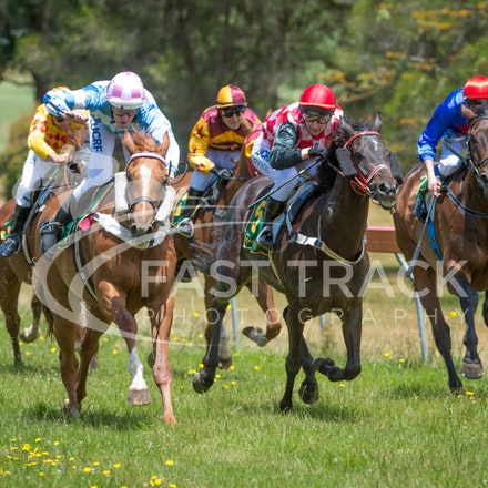 Race 1, Without Exception, Debbie Waymouth_26-12-14, Drouin, WIN_014