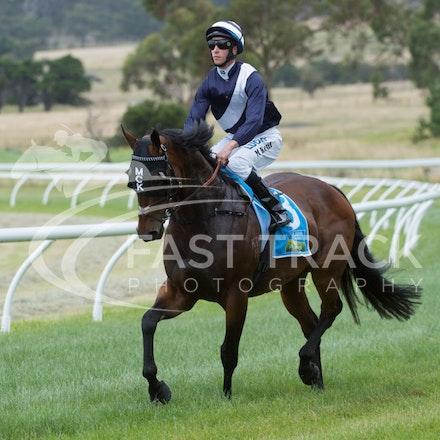 Race 1, King Henry, Michael Kent_01-01-15, Woolamai_0002