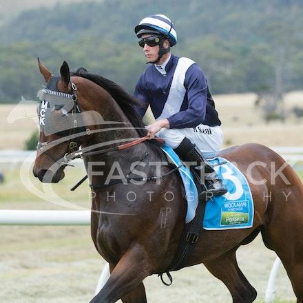Race 1, King Henry, Michael Kent_01-01-15, Woolamai_0003