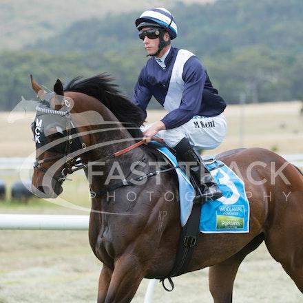 Race 1, King Henry, Michael Kent_01-01-15, Woolamai_0004